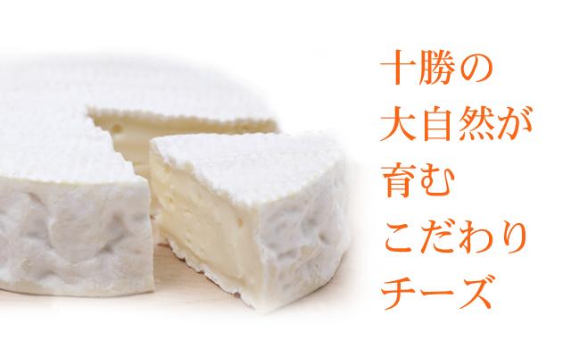 チーズトップ